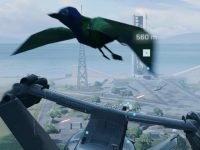 They discover animals at very low resolution in Battlefield 2042 and they are the sea of friendly